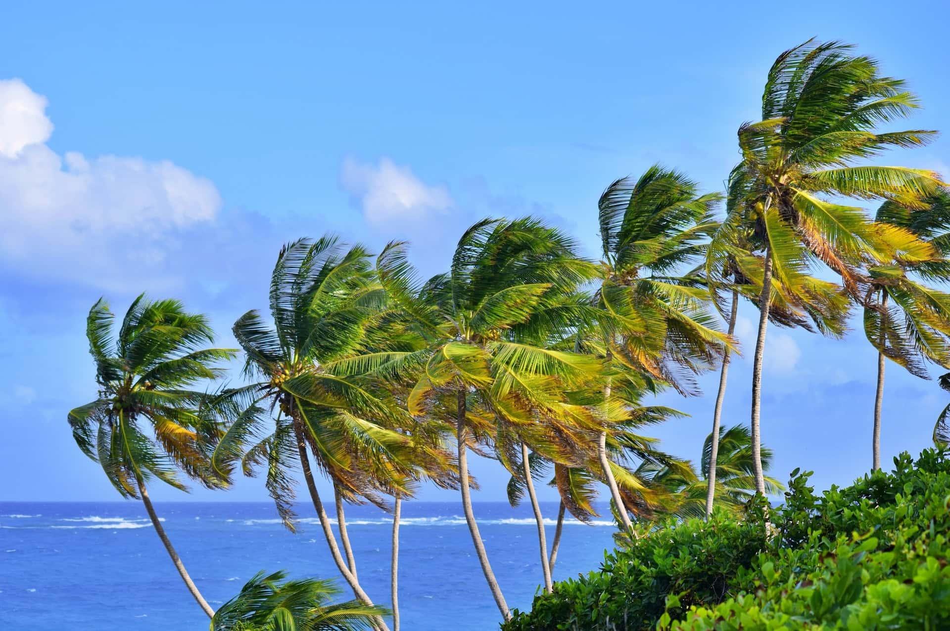 Барбадос, фото