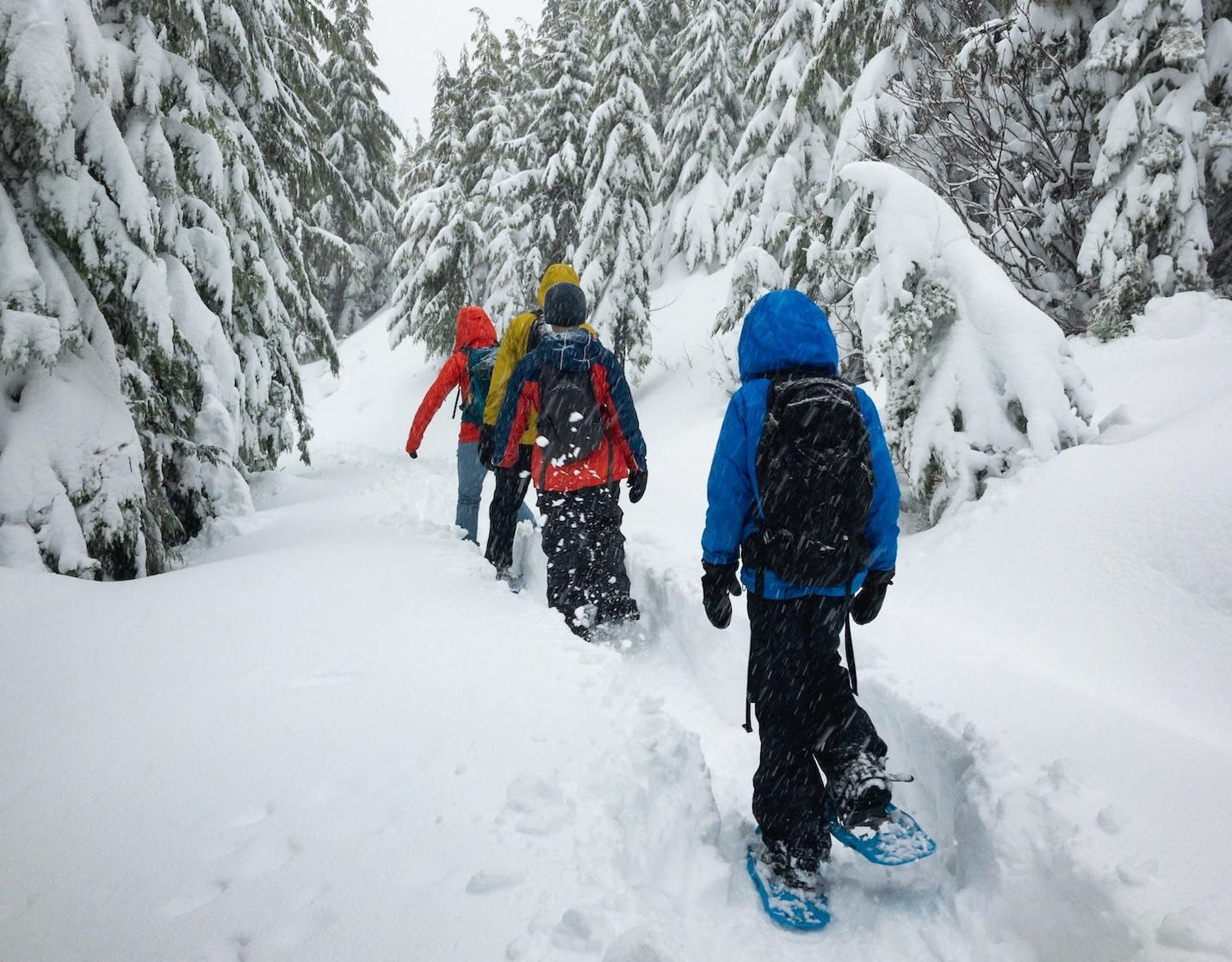 Прогулка на снегоступах, фото