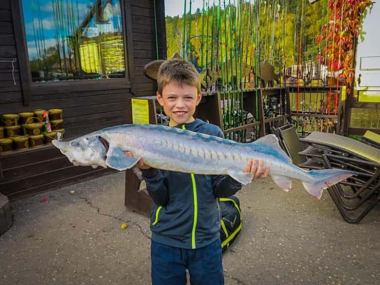 Рыболовный клуб «Золотой сазан» Подмосковье, фото