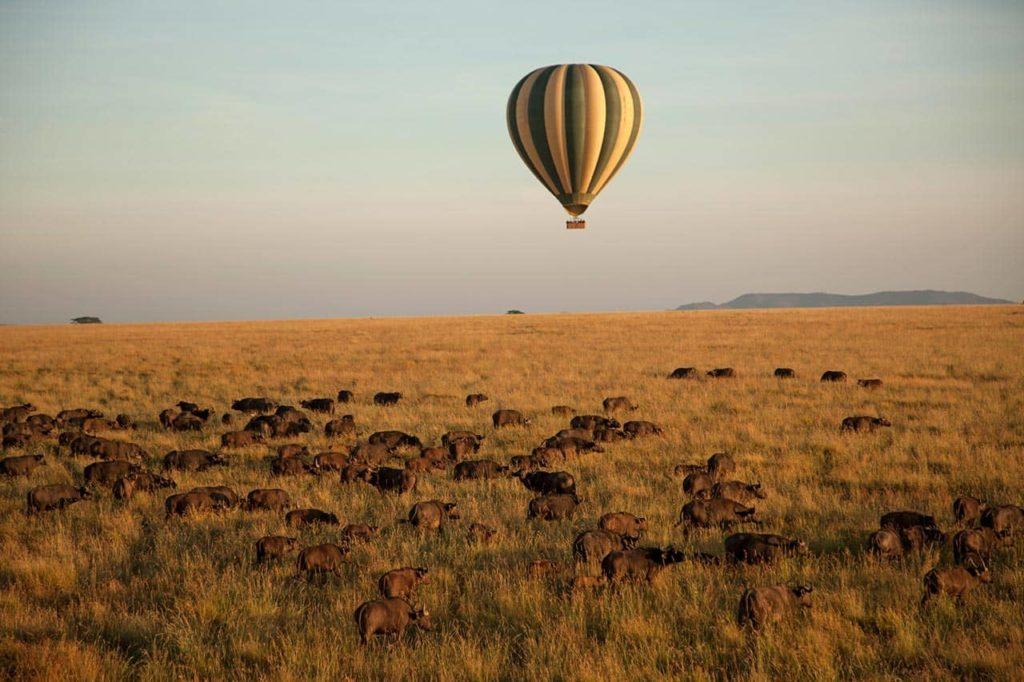 Four Seasons Safari Lodge Serengeti Aerostat Safari, фото