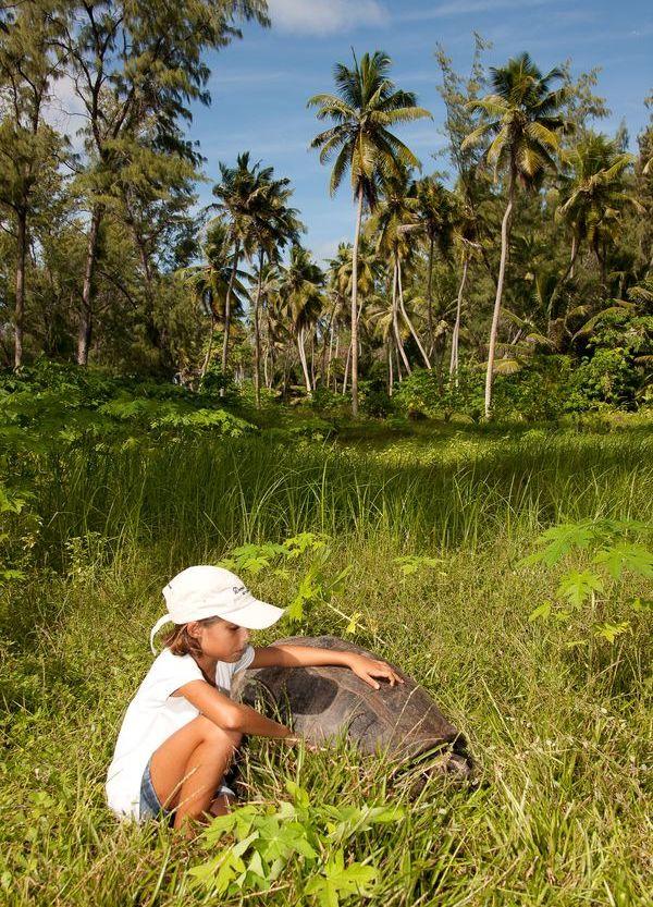 Denis Private Island Resort Seychelles Girl with Tortoise, фото