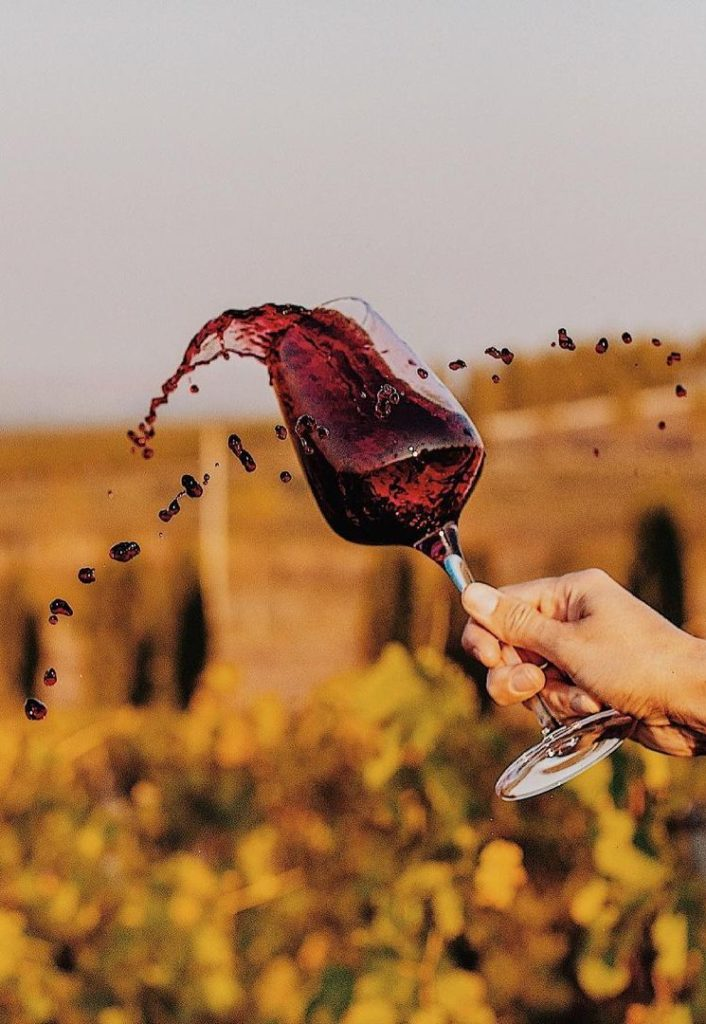 Lefkadia Valley Winery Tasting at Vineyard, фото